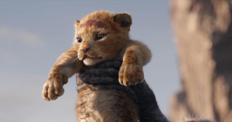 'Der König der Löwen'